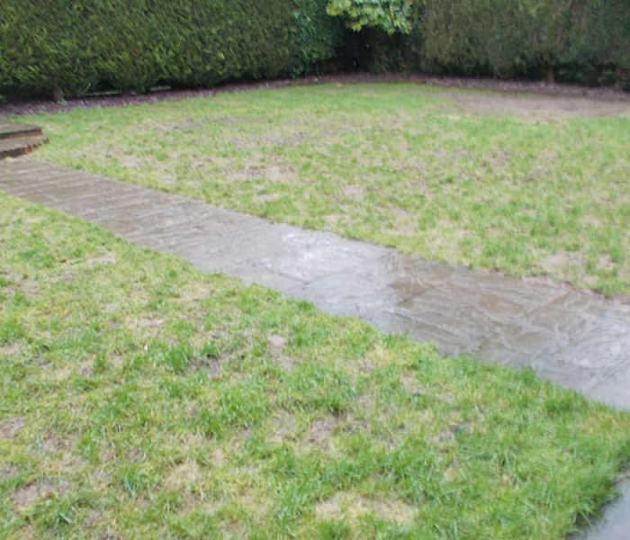 before_artificial_turf_lawn